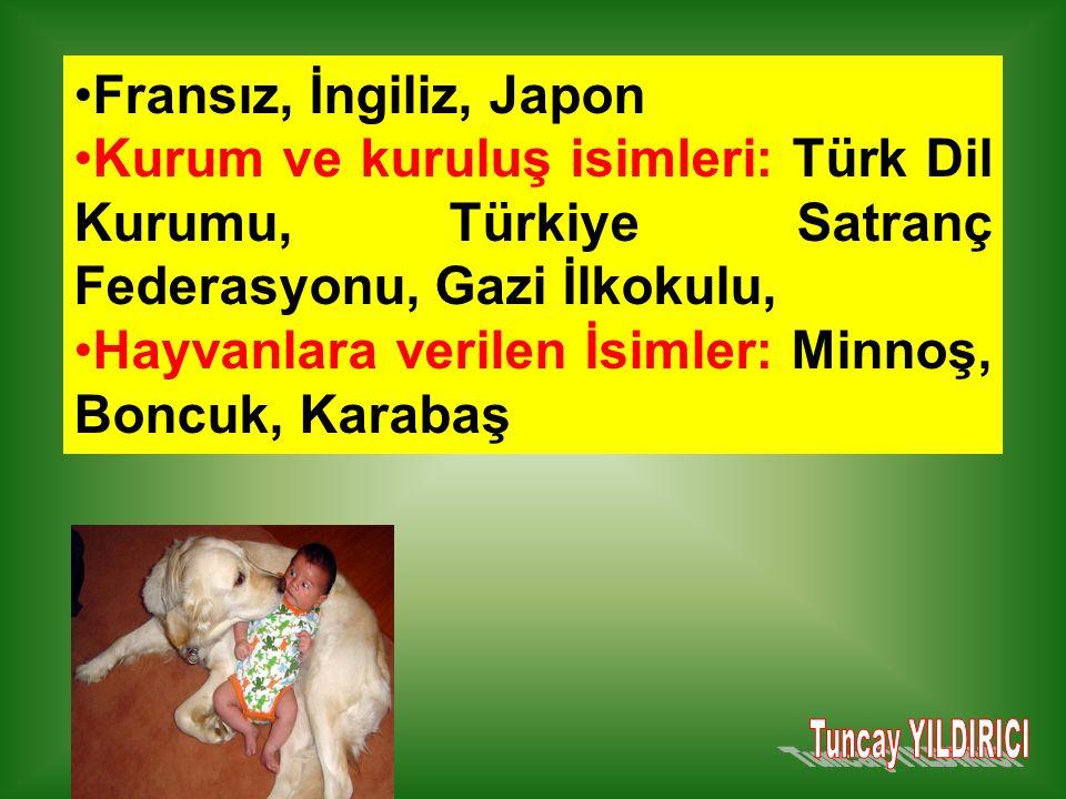 Fransız, İngiliz, Japon Kurum ve kuruluş isimleri: Türk Dil Kurumu, Türkiye Satranç Federasyonu, Gazi İlkokulu, Hayvanlara verilen İsimler: Minnoş, Boncuk, Karabaş