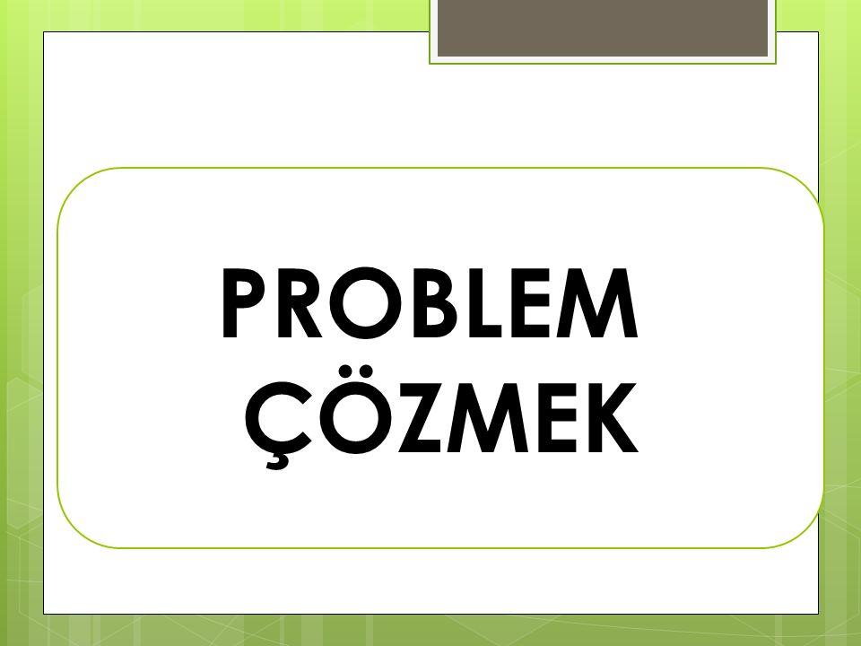 PROBLEM ÇÖZMEK