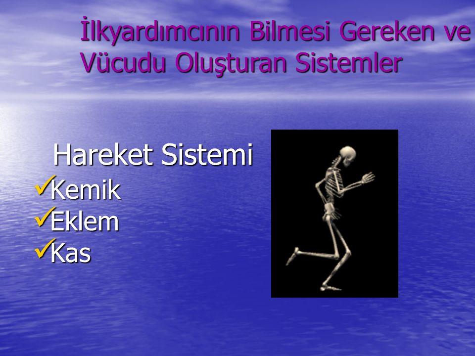 Hareket Sistemi Kemik Kemik Eklem Eklem Kas Kas İlkyardımcının Bilmesi Gereken ve Vücudu Oluşturan Sistemler