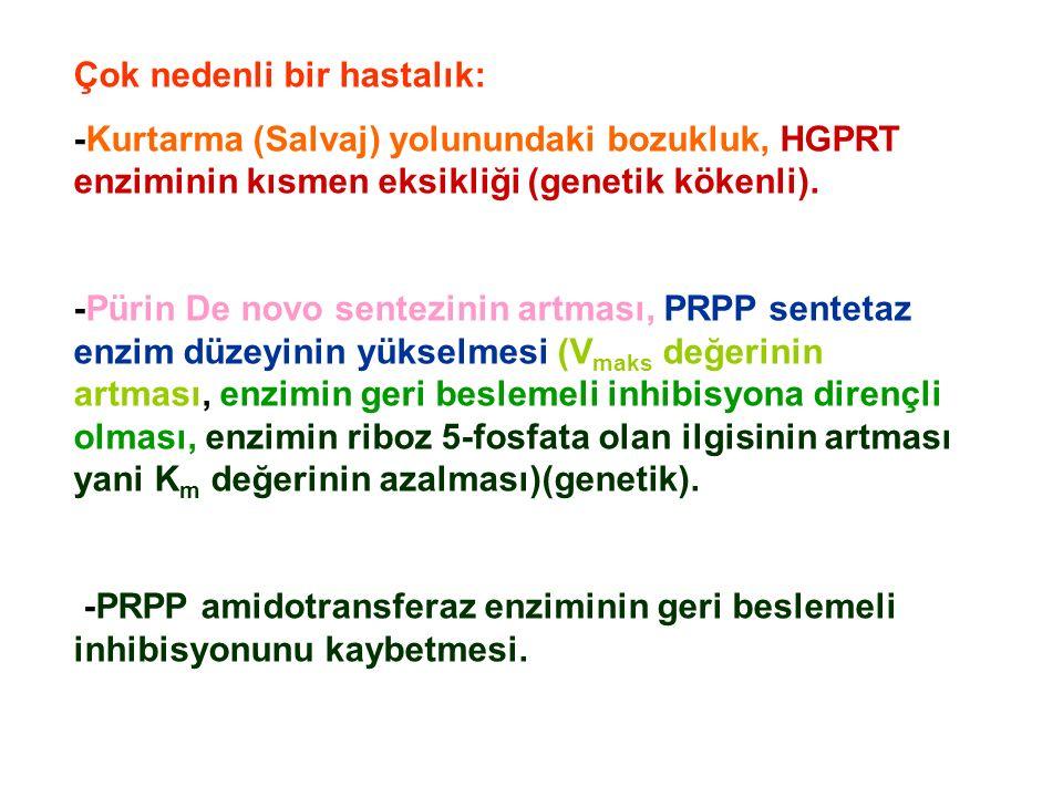 Çok nedenli bir hastalık: -Kurtarma (Salvaj) yolunundaki bozukluk, HGPRT enziminin kısmen eksikliği (genetik kökenli).