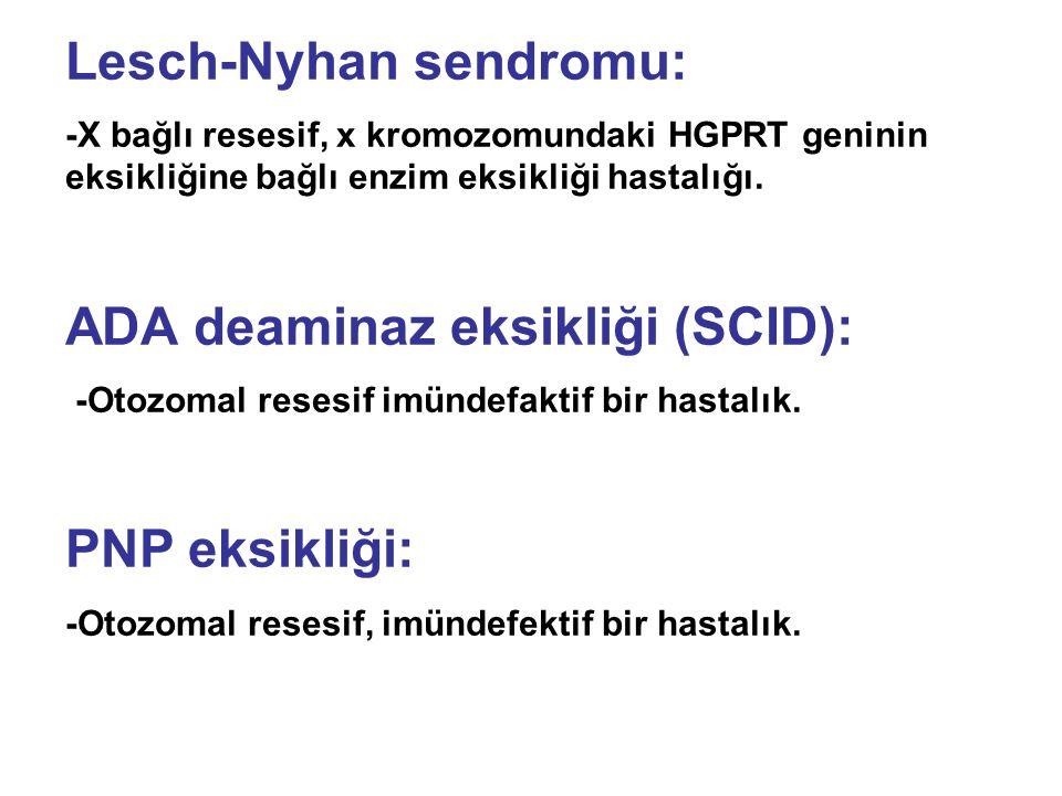 Lesch-Nyhan sendromu: -X bağlı resesif, x kromozomundaki HGPRT geninin eksikliğine bağlı enzim eksikliği hastalığı.