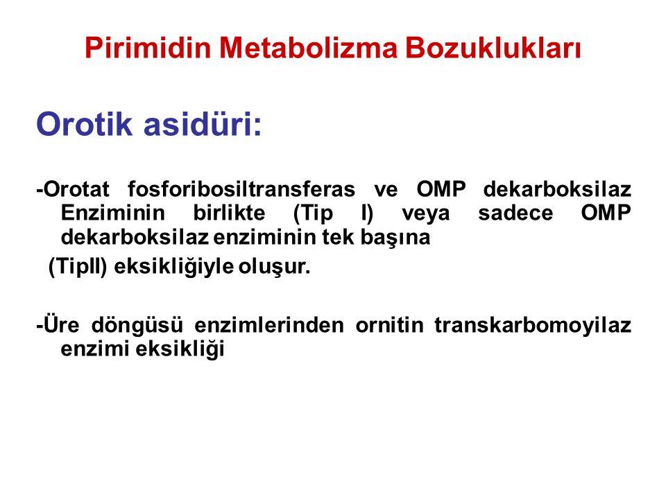 Pirimidin Metabolizma Bozuklukları Orotik asidüri: -Orotat fosforibosiltransferas ve OMP dekarboksilaz Enziminin birlikte (Tip I) veya sadece OMP dekarboksilaz enziminin tek başına (TipII) eksikliğiyle oluşur.