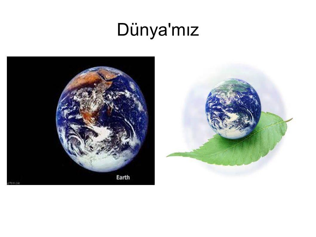 Dünya da Yaşam ● Dünya içinde yaşam olan tek gezegendir, ● Dünyamızın içinde 3gurup canlı yaşar, ● Dünyamız yaşam için en uygun gezegendir.