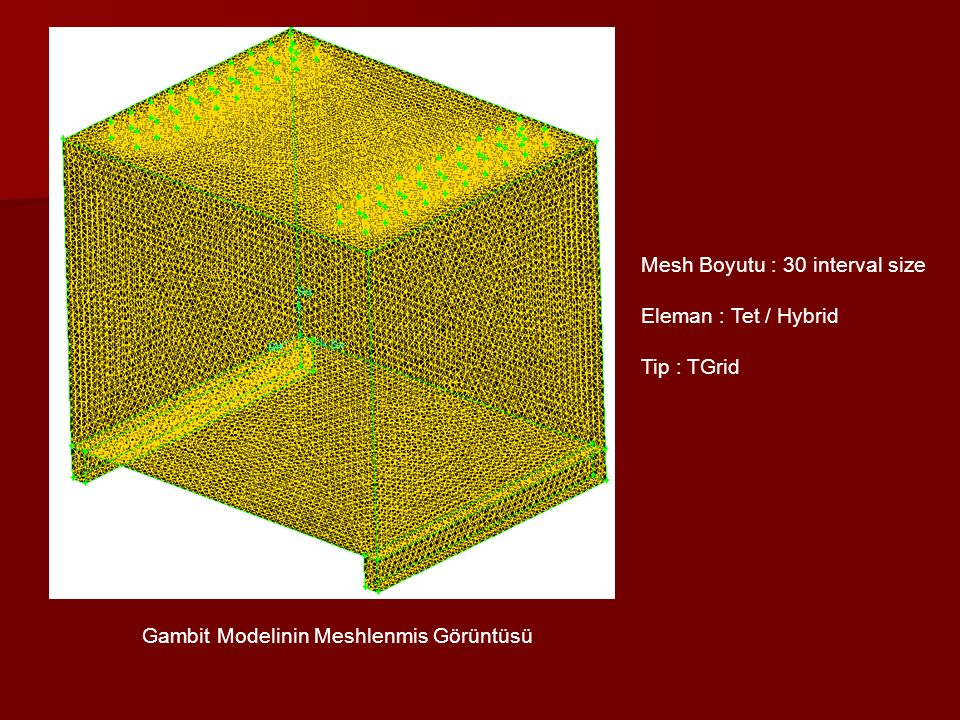 Gambit Modelinin Meshlenmis Görüntüsü Mesh Boyutu : 30 interval size Eleman : Tet / Hybrid Tip : TGrid
