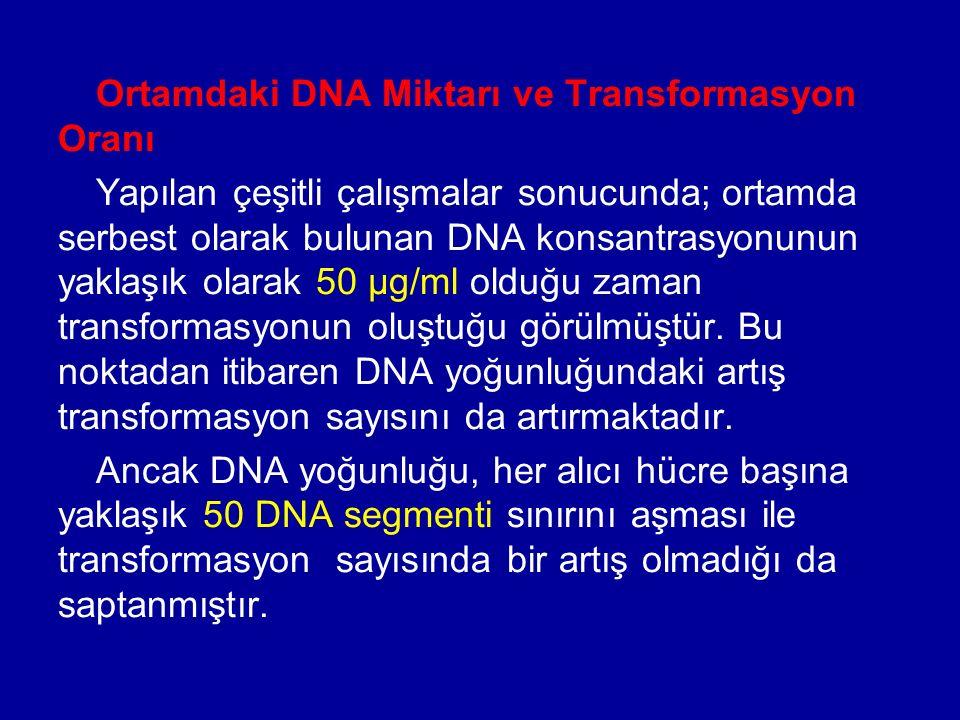 Ortamdaki DNA Miktarı ve Transformasyon Oranı Yapılan çeşitli çalışmalar sonucunda; ortamda serbest olarak bulunan DNA konsantrasyonunun yaklaşık olar