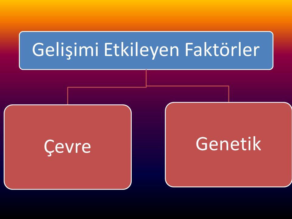 www.cemalsahin.comwww.cemalsahin.co m 37 Gelişimi Etkileyen Faktörler ÇevreGenetik