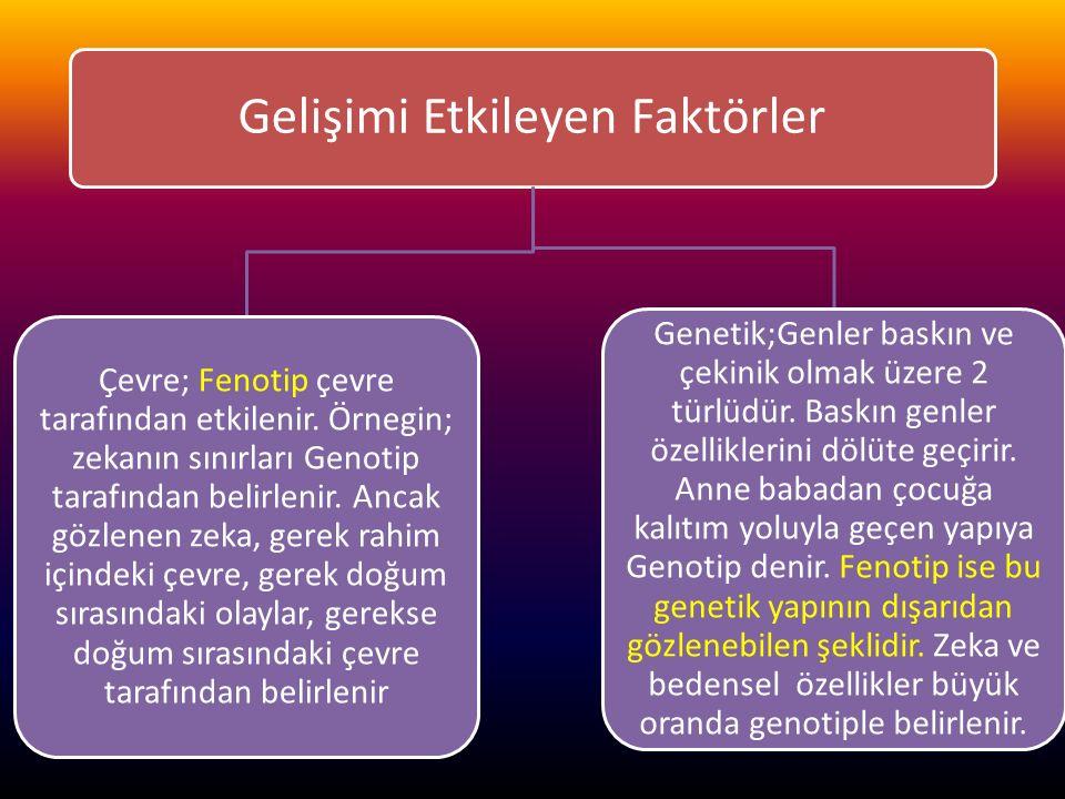 www.cemalsahin.comwww.cemalsahin.co m 38 Gelişimi Etkileyen Faktörler Çevre; Fenotip çevre tarafından etkilenir. Örnegin; zekanın sınırları Genotip ta