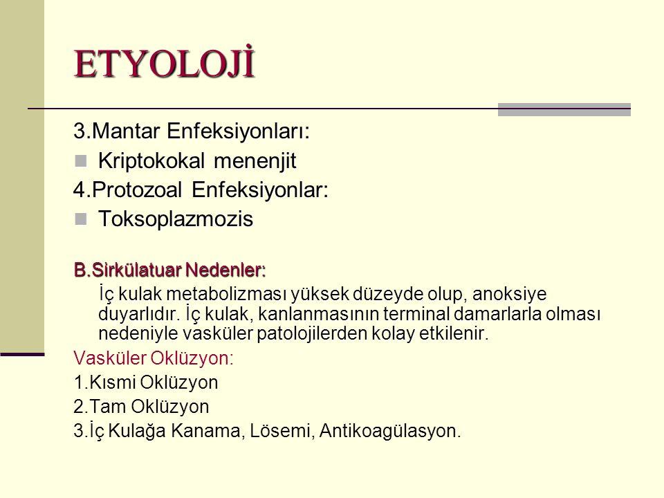 ETYOLOJİ 3.Mantar Enfeksiyonları: Kriptokokal menenjit Kriptokokal menenjit 4.Protozoal Enfeksiyonlar: Toksoplazmozis Toksoplazmozis B.Sirkülatuar Nedenler: İç kulak metabolizması yüksek düzeyde olup, anoksiye duyarlıdır.