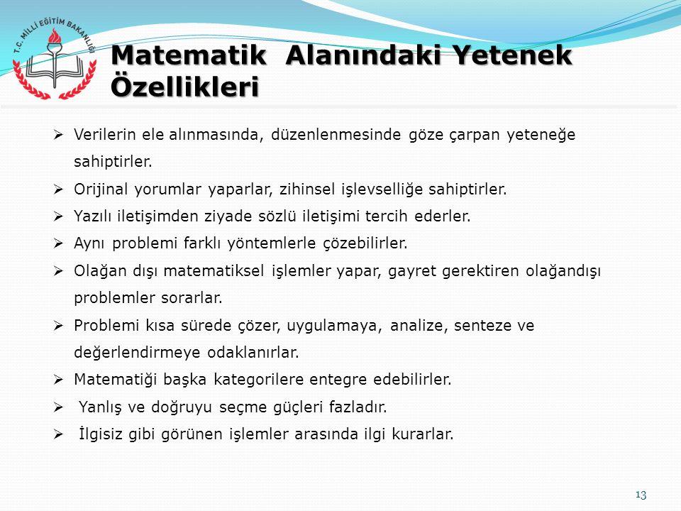 Matematik Alanındaki Yetenek Özellikleri 13  Verilerin ele alınmasında, düzenlenmesinde göze çarpan yeteneğe sahiptirler.