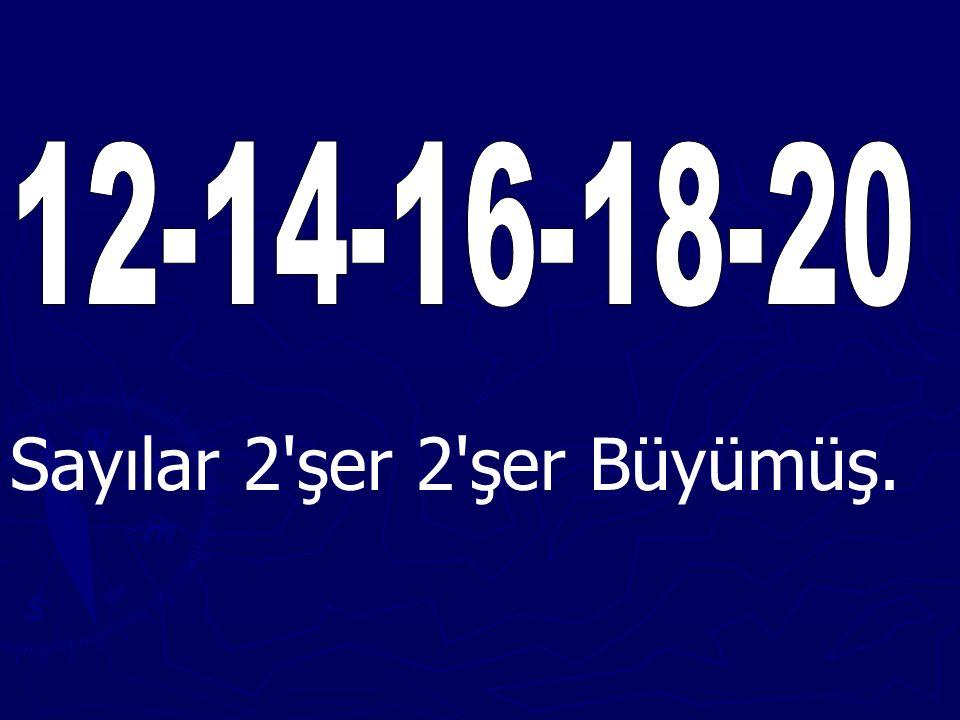13579 1311 Sayılar 2'şer 2'şer büyüyerek dizilmiş.