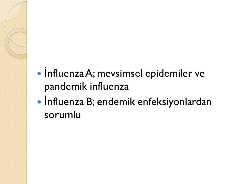 İ nfluenza A, Hemaglutinin (H) ve Nöraminidaz (N) yüzey antijenlerine göre subtiplere ayrılır, (15 HA, 9 NA) İ nfluenza B ve C subtiplere ayrılmaz.
