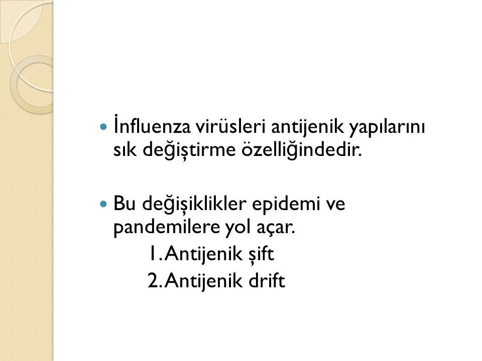 İ nfluenza virüsleri antijenik yapılarını sık de ğ iştirme özelli ğ indedir.