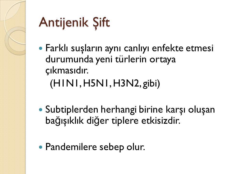Komplikasyonlar Akci ğ er Komplikasyonları 1.Primer influenza pnömonisi 2.