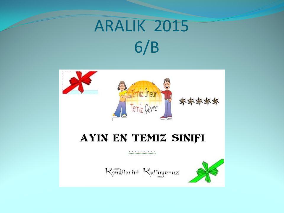 ARALIK 2015 6/B