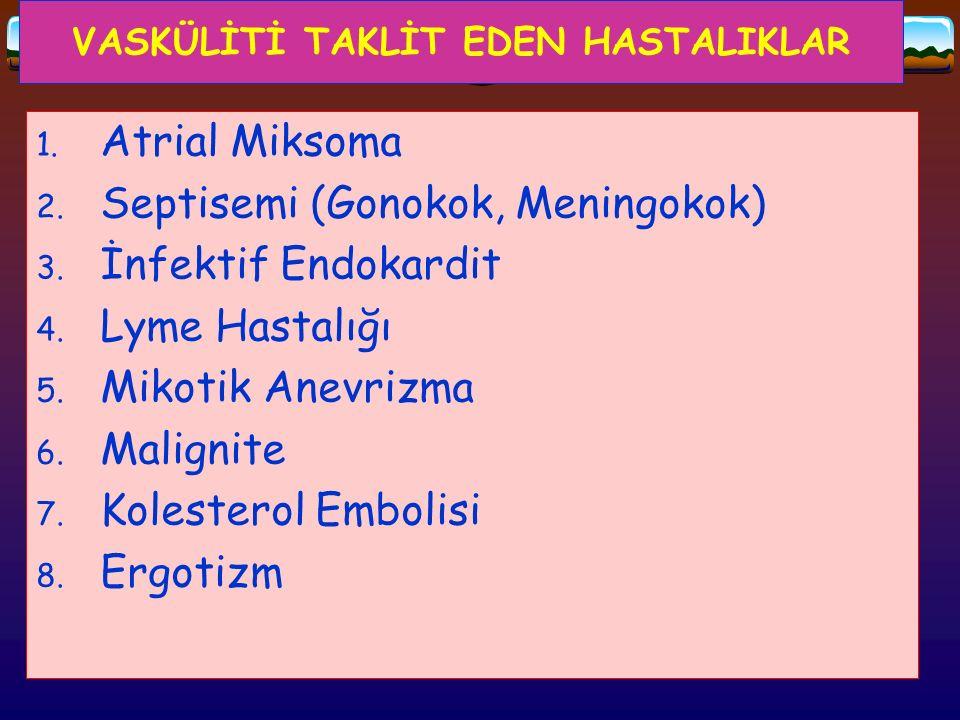 VASKÜLİTİ TAKLİT EDEN HASTALIKLAR 1. Atrial Miksoma 2. Septisemi (Gonokok, Meningokok) 3. İnfektif Endokardit 4. Lyme Hastalığı 5. Mikotik Anevrizma 6