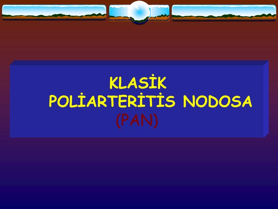 KLASİK POLİARTERİTİS NODOSA (PAN)