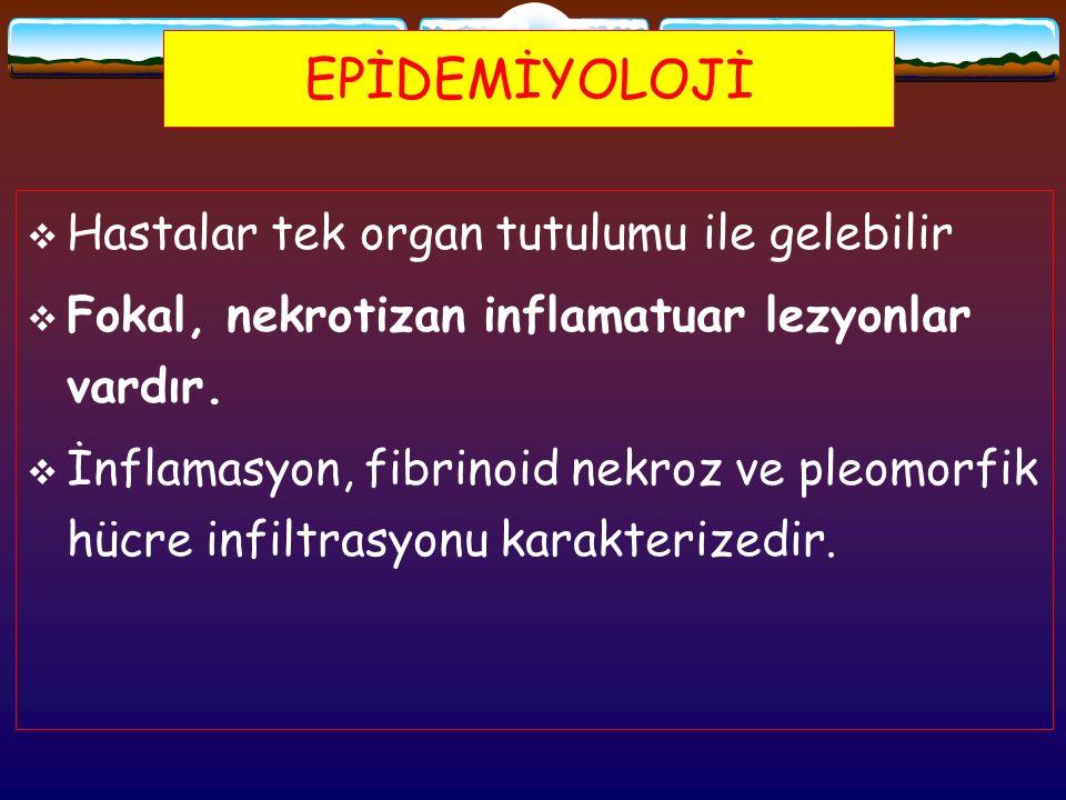 EPİDEMİYOLOJİ  Hastalar tek organ tutulumu ile gelebilir  Fokal, nekrotizan inflamatuar lezyonlar vardır.  İnflamasyon, fibrinoid nekroz ve pleomor