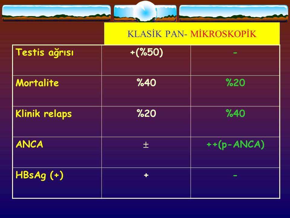 KLASİK PAN- MİKROSKOPİK Testis ağrısı+(%50)- Mortalite%40%20 Klinik relaps%20%40 ANCA  ++(p-ANCA) HBsAg (+)+-