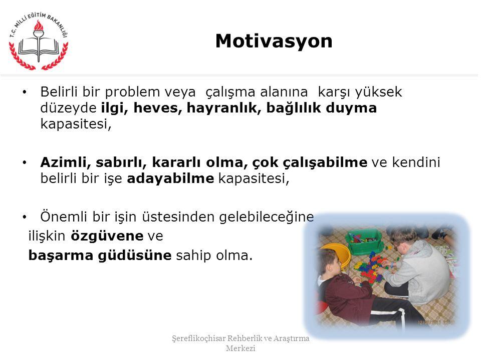 Motivasyon Belirli bir problem veya çalışma alanına karşı yüksek düzeyde ilgi, heves, hayranlık, bağlılık duyma kapasitesi, Azimli, sabırlı, kararlı o
