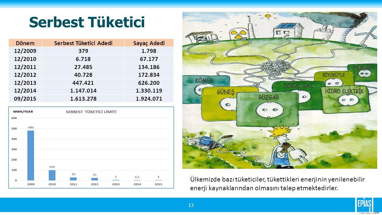 Hizmete Ozel Serbest Tüketici 13 DönemSerbest Tüketici AdediSayaç Adedi 12/20093791.798 12/20106.71867.177 12/201127.485134.186 12/201240.728172.834 12/2013447.421626.200 12/20141.147.0141.330.119 09/20151.613.2781.924.071 Ülkemizde bazı tüketiciler, tükettikleri enerjinin yenilenebilir enerji kaynaklarından olmasını talep etmektedirler.