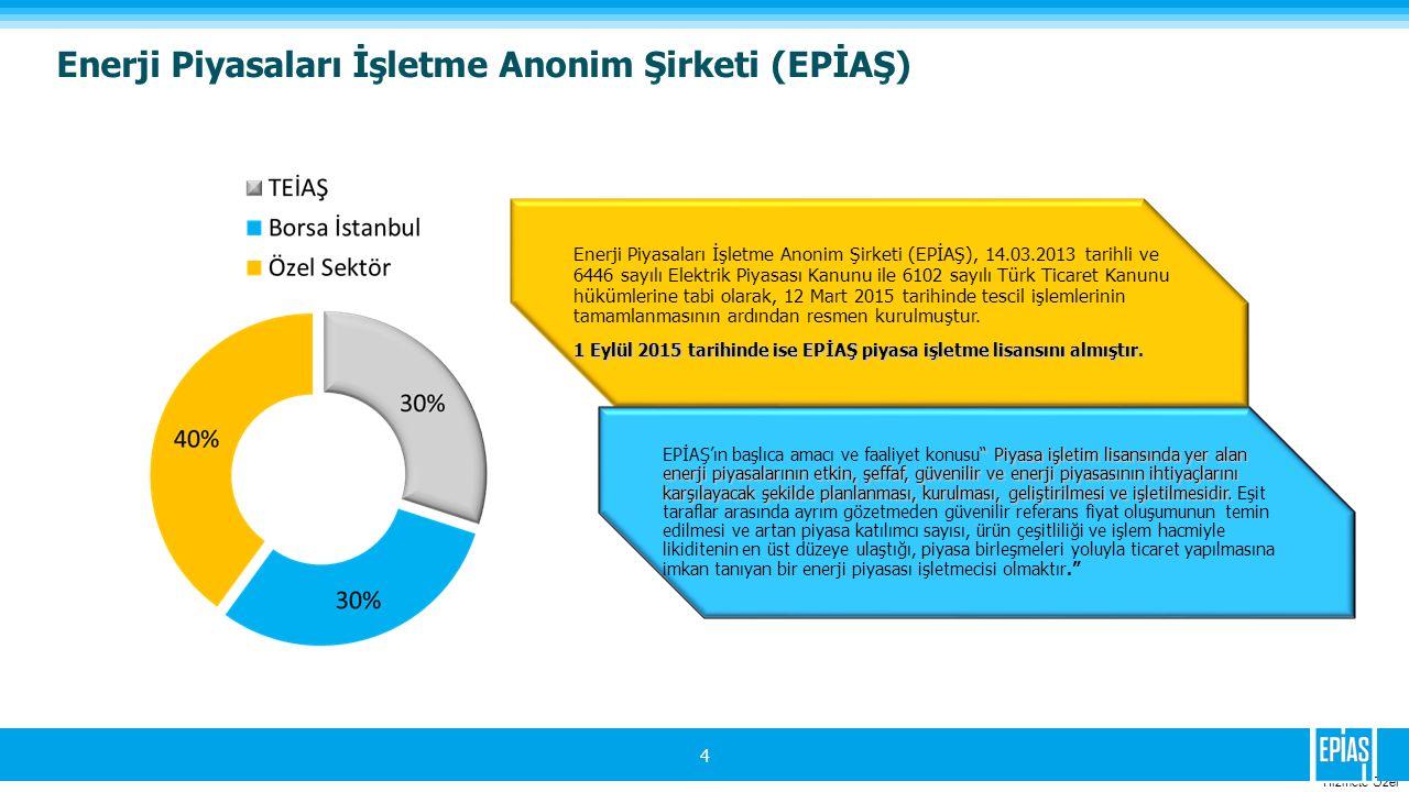 Hizmete Ozel 4 Enerji Piyasaları İşletme Anonim Şirketi (EPİAŞ) Enerji Piyasaları İşletme Anonim Şirketi (EPİAŞ), 14.03.2013 tarihli ve 6446 sayılı Elektrik Piyasası Kanunu ile 6102 sayılı Türk Ticaret Kanunu hükümlerine tabi olarak, 12 Mart 2015 tarihinde tescil işlemlerinin tamamlanmasının ardından resmen kurulmuştur.