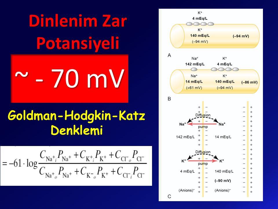 ~ - 70 mV Dinlenim Zar Potansiyeli Goldman-Hodgkin-Katz Denklemi