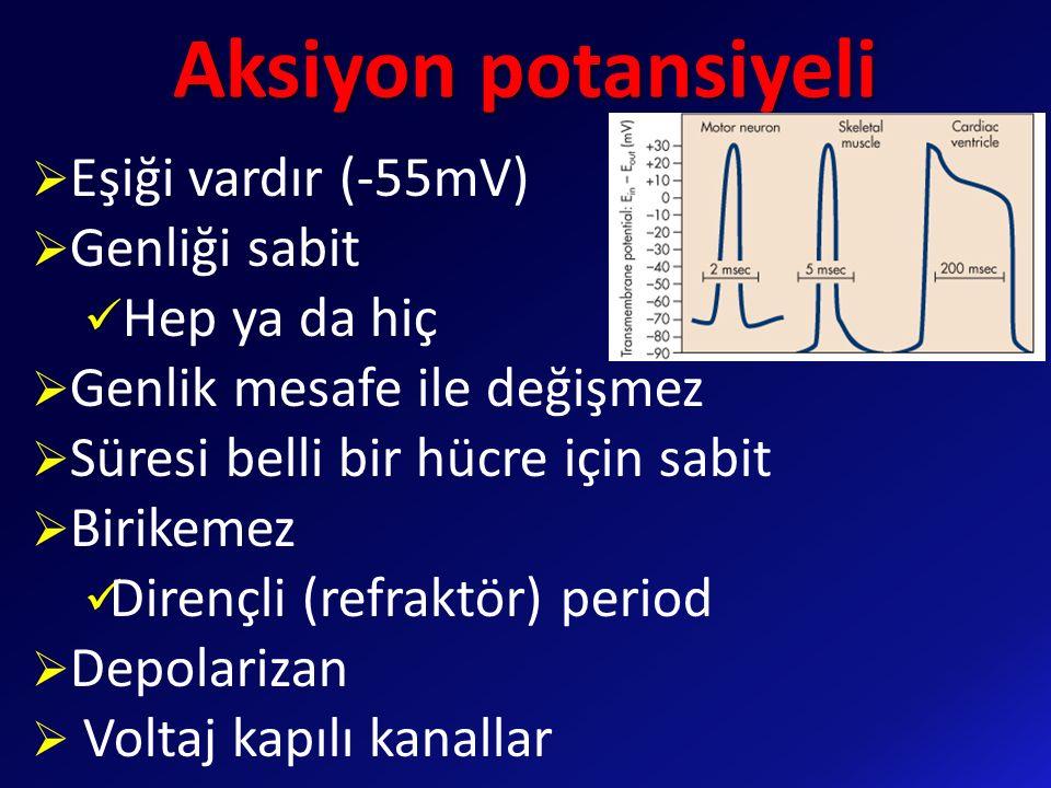 Aksiyon potansiyeli  Eşiği vardır (-55mV)  Genliği sabit Hep ya da hiç  Genlik mesafe ile değişmez  Süresi belli bir hücre için sabit  Birikemez