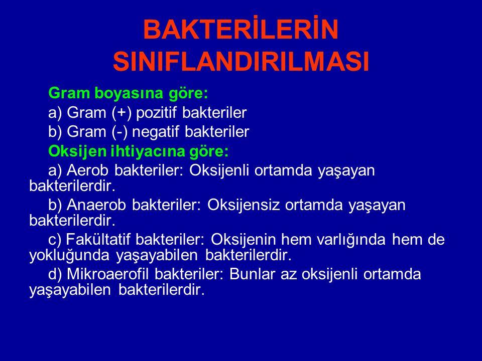 BAKTERİLERİN SINIFLANDIRILMASI Gram boyasına göre: a) Gram (+) pozitif bakteriler b) Gram (-) negatif bakteriler Oksijen ihtiyacına göre: a) Aerob bak