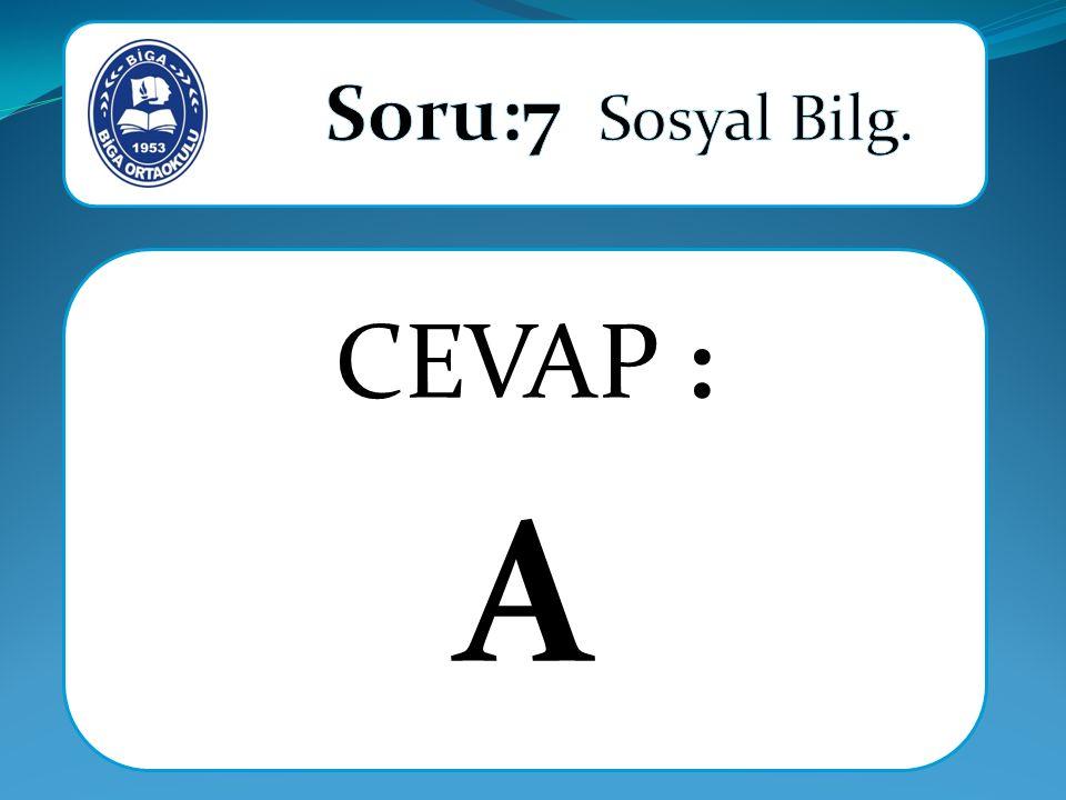 CEVAP : A