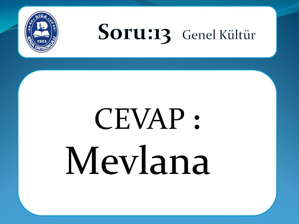CEVAP : Mevlana