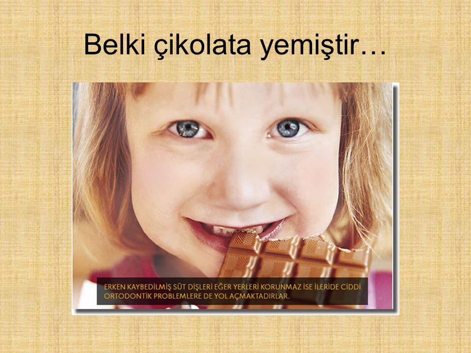 Belki çikolata yemiştir…
