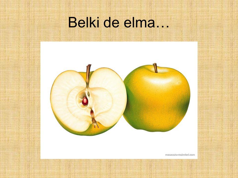 Belki de elma…