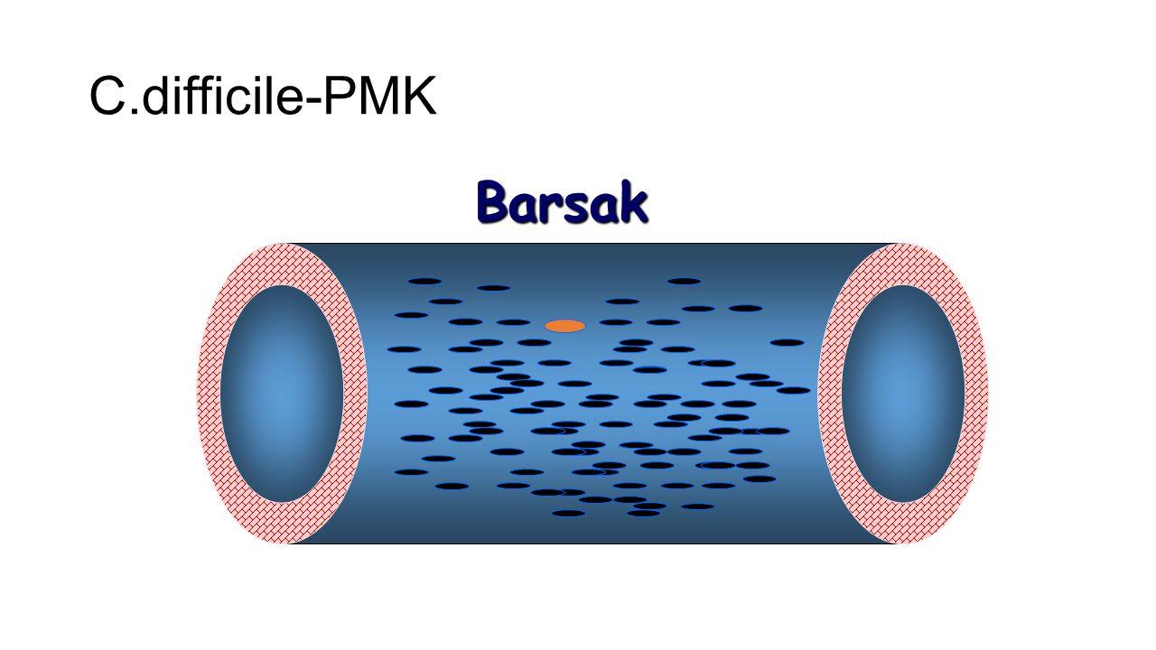 Barsak C.difficile-PMK