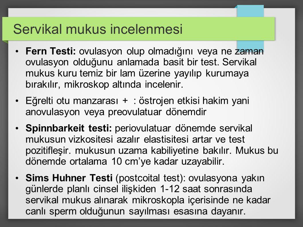 Servikal mukus incelenmesi Fern Testi: ovulasyon olup olmadığını veya ne zaman ovulasyon olduğunu anlamada basit bir test. Servikal mukus kuru temiz b