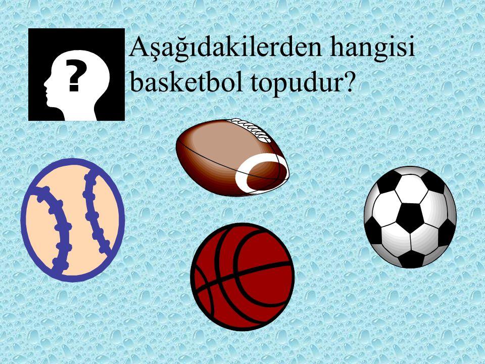 Aşağıdakilerden hangisi basketbol topudur?