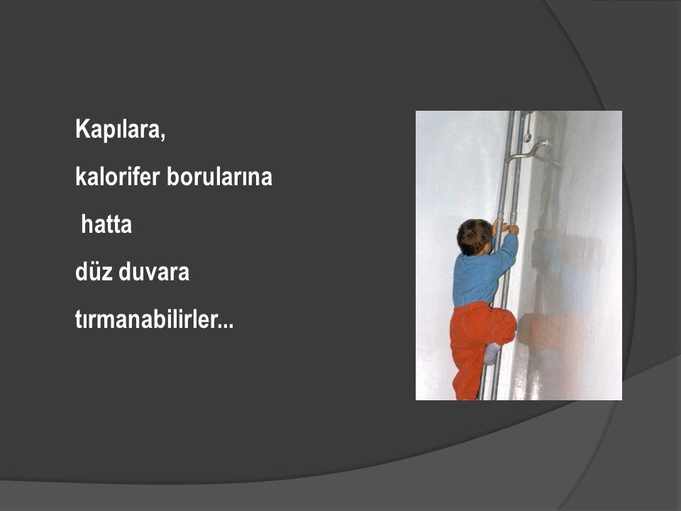 Kapılara, kalorifer borularına hatta düz duvara tırmanabilirler...