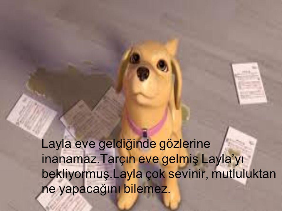 Layla eve geldiğinde gözlerine inanamaz.Tarçın eve gelmiş Layla'yı bekliyormuş.Layla çok sevinir, mutluluktan ne yapacağını bilemez.