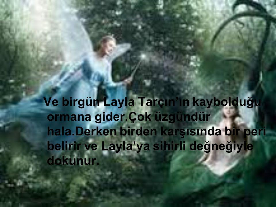 Ve birgün Layla Tarçın'ın kaybolduğu ormana gider.Çok üzgündür hala.Derken birden karşısında bir peri belirir ve Layla'ya sihirli değneğiyle dokunur.