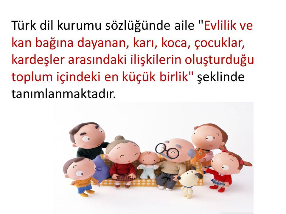 Türk dil kurumu sözlüğünde aile