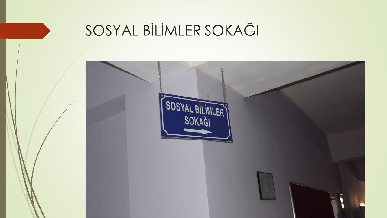SOSYAL BİLİMLER SOKAĞI