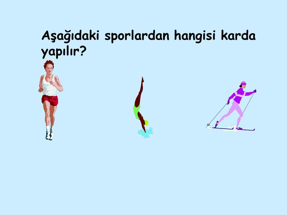 Aşağıdaki sporlardan hangisi karda yapılır?