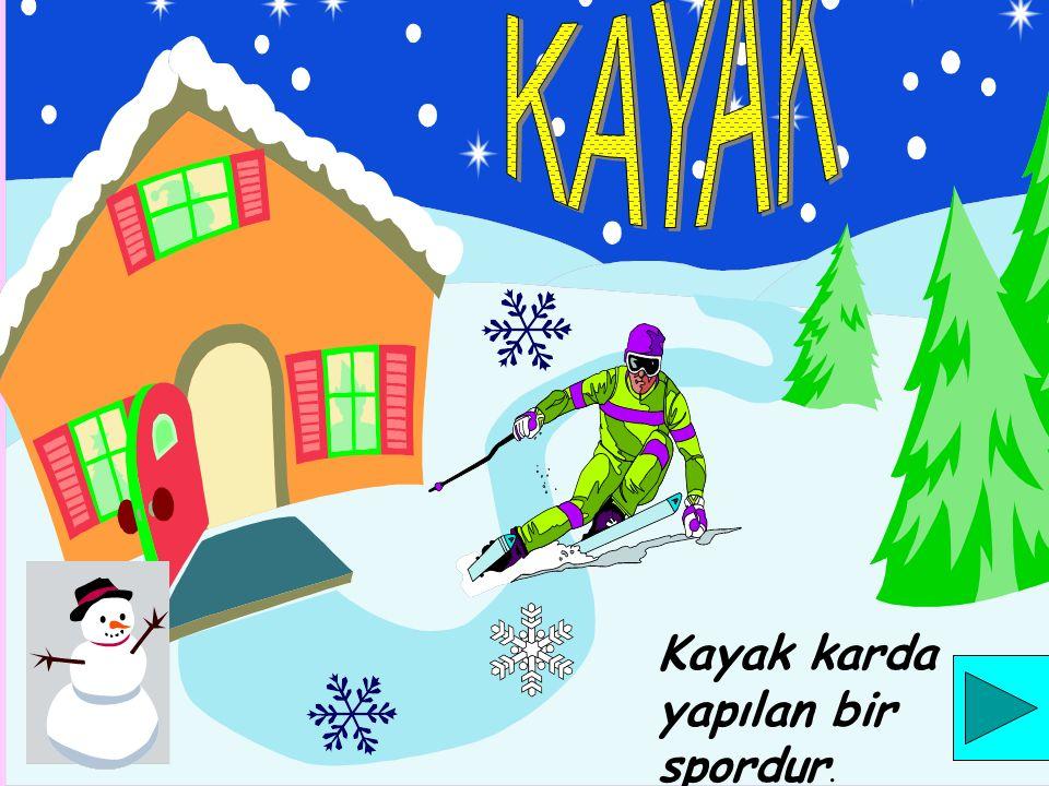 Kayak karda yapılan bir spordur.