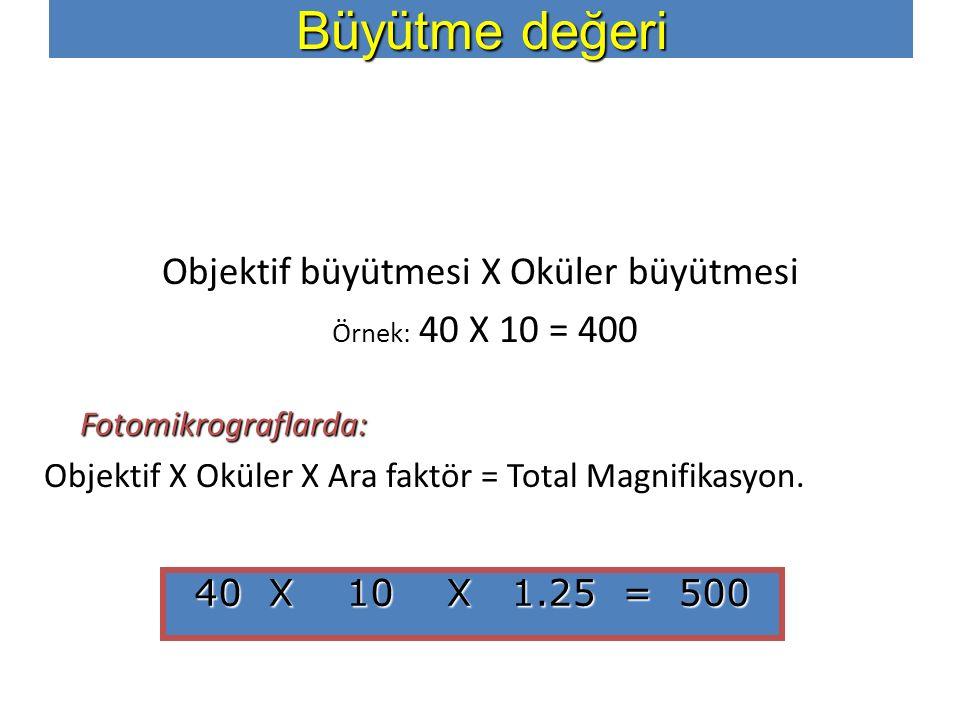 Objektif büyütmesi X Oküler büyütmesi Örnek: 40 X 10 = 400 Fotomikrograflarda: Objektif X Oküler X Ara faktör = Total Magnifikasyon. 40 X 10 X 1.25 =