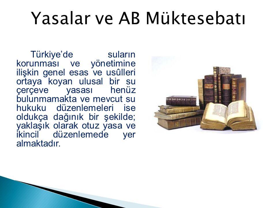 02.11.2011 tarihli ve 658 sayılı KHK ile 2009 yılında İstanbul'da Yapılan Beşinci Dünya Su Forumu Sekretaryası Su Enstitüsüne dönüştürülmüştür.