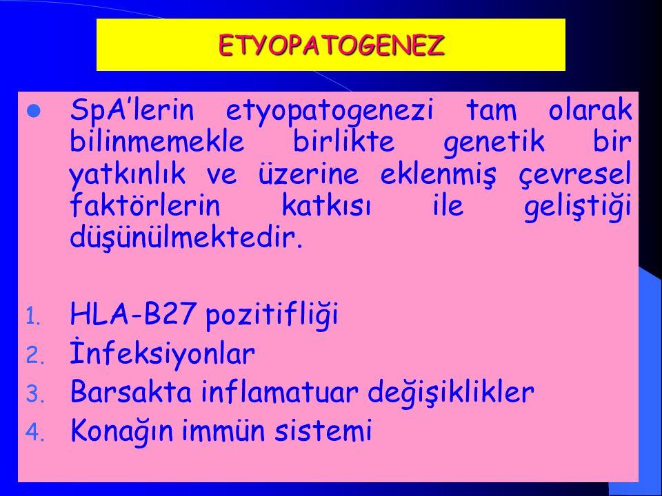 SORU:5-Aşağıdaki özelliklerden hangisi Ankilozan Spondilit'de bel ağrısının özelliği değildir.