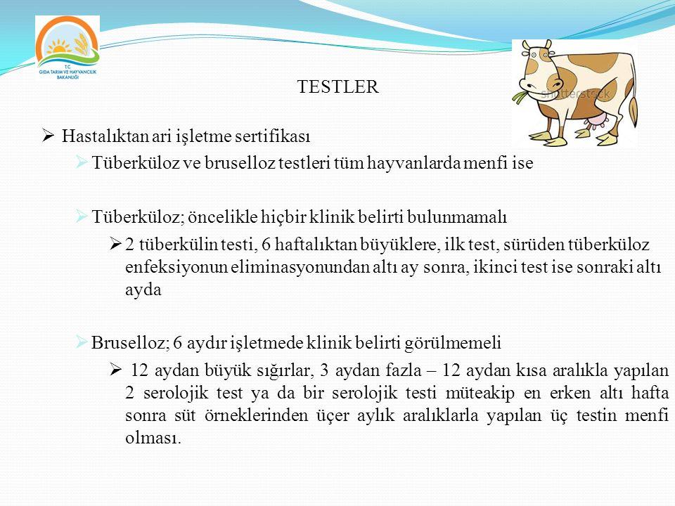 TESTLER  Hastalıktan ari işletme sertifikası  Tüberküloz ve bruselloz testleri tüm hayvanlarda menfi ise  Tüberküloz; öncelikle hiçbir klinik belirti bulunmamalı  2 tüberkülin testi, 6 haftalıktan büyüklere, ilk test, sürüden tüberküloz enfeksiyonun eliminasyonundan altı ay sonra, ikinci test ise sonraki altı ayda  Bruselloz; 6 aydır işletmede klinik belirti görülmemeli  12 aydan büyük sığırlar, 3 aydan fazla – 12 aydan kısa aralıkla yapılan 2 serolojik test ya da bir serolojik testi müteakip en erken altı hafta sonra süt örneklerinden üçer aylık aralıklarla yapılan üç testin menfi olması.