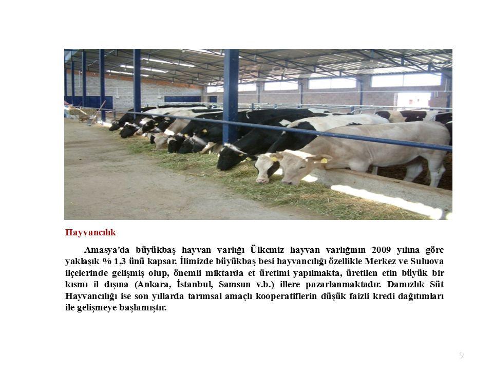 60 Kamu Harcamaları Dağılımı 1.000 TL OCAK- 20156 MUHASEBE