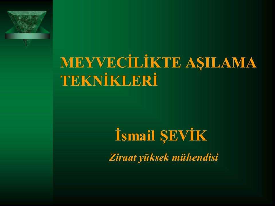 MEYVECİLİKTE AŞILAMA TEKNİKLERİ İsmail ŞEVİK Ziraat yüksek mühendisi