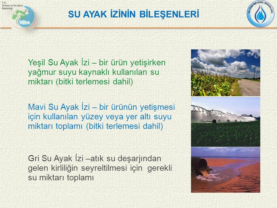 SU AYAK İZİNİN BİLEŞENLERİ Yeşil Su Ayak İzi – bir ürün yetişirken yağmur suyu kaynaklı kullanılan su miktarı (bitki terlemesi dahil) Mavi Su Ayak İzi
