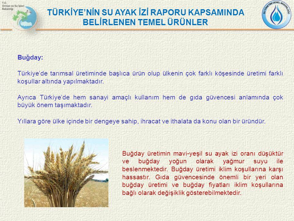 TÜRKİYE'NİN SU AYAK İZİ RAPORU KAPSAMINDA BELİRLENEN TEMEL ÜRÜNLER Buğday: Türkiye'de tarımsal üretiminde başlıca ürün olup ülkenin çok farklı köşesin